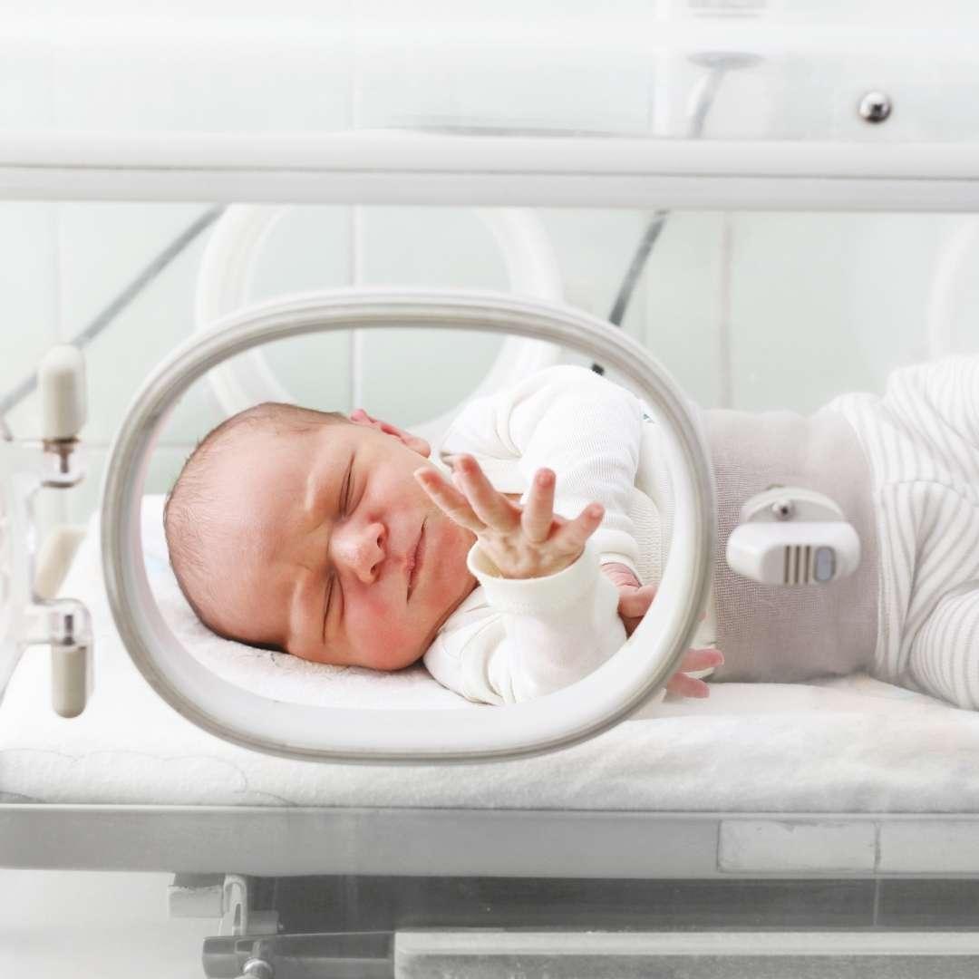 Berçário Maternidade